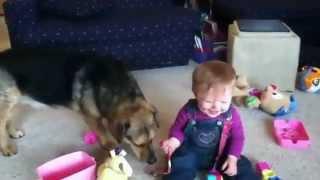 смешные малыш и собака