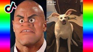 Funny Ironic Tik Tok Memes Compilation 😂💀(V11) Tik Tok Try Not To Laugh Challenge