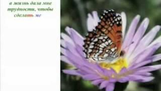 Урок бабочки. Секрет успешных людей!.wmv