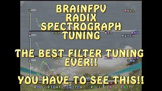POSSIBLY THE EASIEST WAY TO TUNE BETAFLIGHT FILTERS!! BRAIN FPV SPECTROGRAPH
