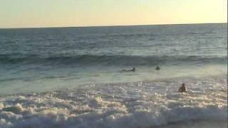 Acapulco,Pie de la cuesta daulphins