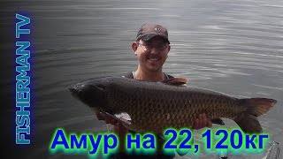 рыбалка карп 120 кг видео