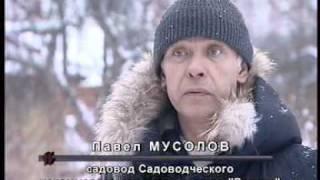 """""""Человек и закон"""" о ситуации с поселком """"Речник"""""""