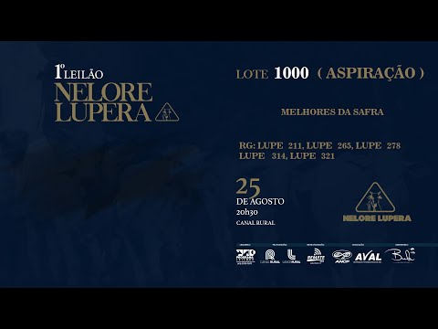 LOTE 1000