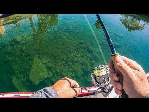 Ultra Clear Water Fishing For BIG Bass! — Tactical Bassin