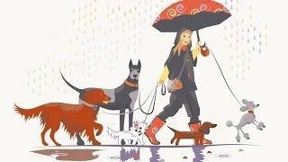 СОБАКА В ДОМЕ: как приучить СОБАКУ к ТУАЛЕТУ| ходить на улицу