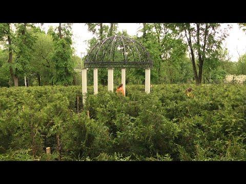 Суспільне Житомир: В житомирському міському парку знову запрацював атракціон