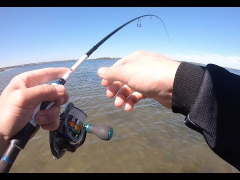 Flathead Fishing The Swan River | Light Tackle Fun
