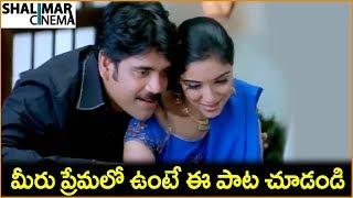 Nagarjuna, Asin || Latest Telugu Movie Scenes || Shalimarcinema
