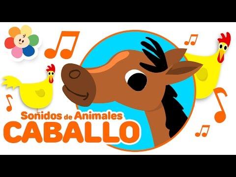 Los Sonidos de Animales - El Caballo | Rondas Infantiles de Los Animales para Niños | BabyFirst