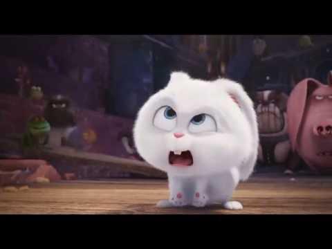 ペット 凶悪うさぎ スノーボール が高笑い Youtube