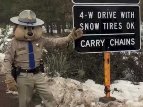 CHP Chipper Snow