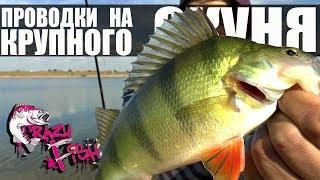 ЛОВЛЯ ОКУНЯ на СИЛИКОНОВЫЕ ПРИМАНКИ - 2 Хитрые Проводки на Крупного Окуня Crazy Fish Часть 2