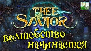 tree of Savior Великолепная сказка с потрясающим Геймплеем. Обзор