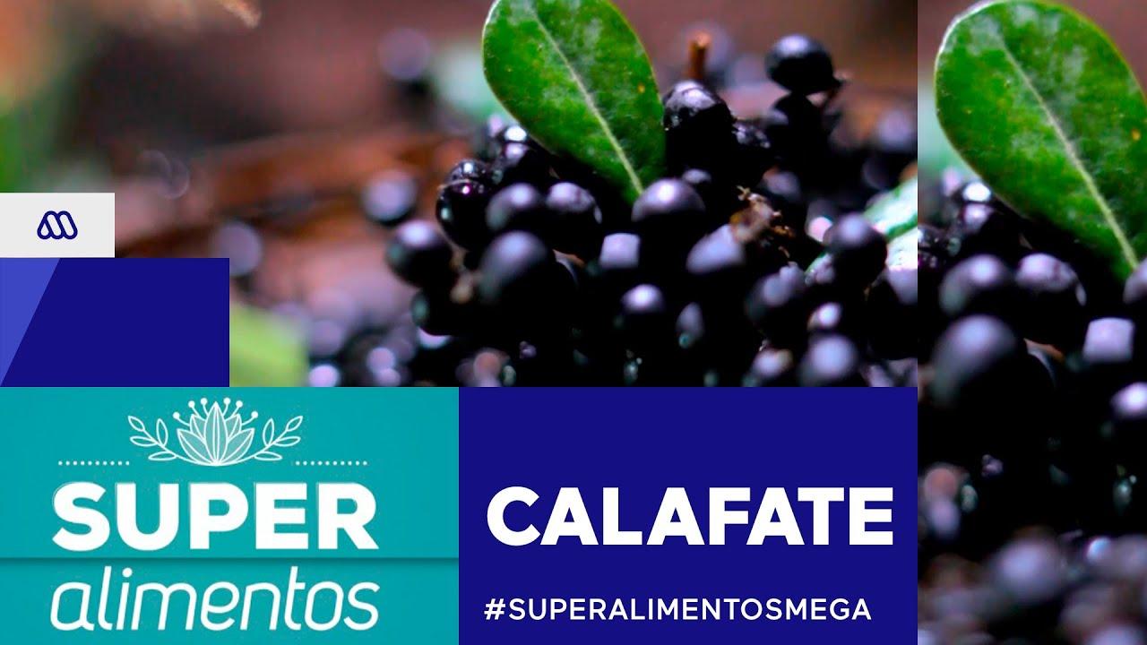 #SúperAlimentosMega / Calafate / #Mega
