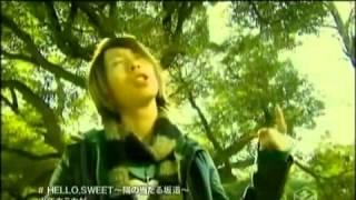 少年カミカゼ - HELLO.SWEET~陽の当たる坂道~
