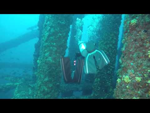 Texas Flower Gardens Oil Rig Dive w/ Rig2Reef Explorers