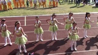 彰化縣青山小105年運動會基礎舞蹈表演-啦啦隊