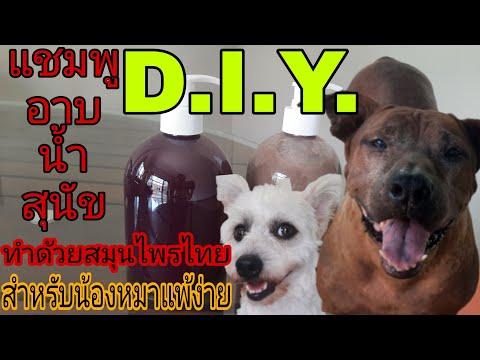 แชมพูอาบน้ำสุนัขสูตรสมุนไพรเข้มข้น ใครมีหมาแพ้ง่ายไม่ควรพลาดคลิปนี้!!!