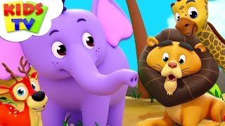 Zoo Song | Super Supremes Cartoons | Kindergarten Nursery Rhymes For Toddlers | Kids Videos
