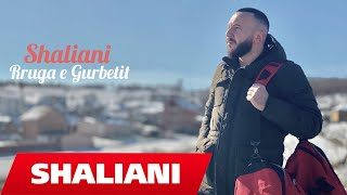 Shaliani -  Rruga e Gurbetit (Official Video 4K)