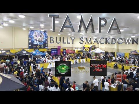 Bully Pedex Tampa Bully Smackdown 2019