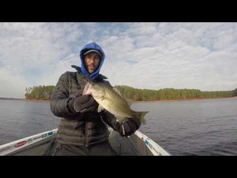 Clarks hill lake bass fishing youtube for Clarks hill lake fishing report