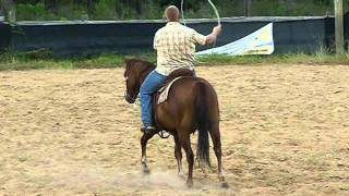 Smoke - Reg. AQHA rope horse