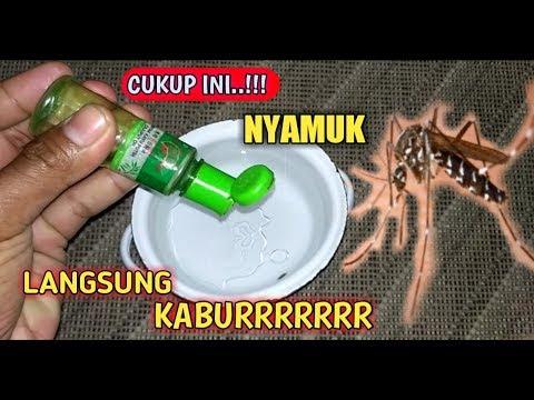 GAK sAMPAI 1 MENIT !!, Nyamuk Hilang Selamanya Cuma dengan ini, Cara usir nyamuk || bhonten official.