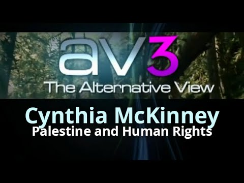 AV3 - Cynthia McKinney - Palestine and Human Rights