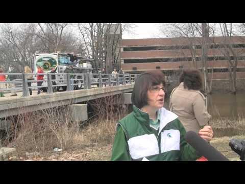 Steelhead Trout in the Red Cedar River