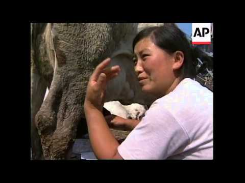 CHINA: HARBIN: FLOOD RELIEF OPERATION CONTINUES