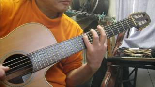 TWINKLE WING - トゥインクル・ウィング ( CASIOPEA ) / solo guitar ( ソロ・ギター )