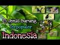 Inilah  Jenis Burung Kicau Yang Paling Populer Di Indonesia  Mp3 - Mp4 Download