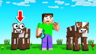 Which COW Is The REAL SLOGO?! (Minecraft Guess Who)