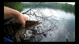 Рыбалка озеро Долгое