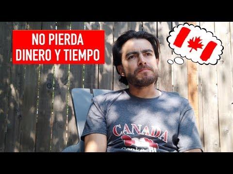 🇨🇦 Si Va A Estudiar En Canadá No Pierda Dinero Y Tiempo Como Nosotros 🇨🇦