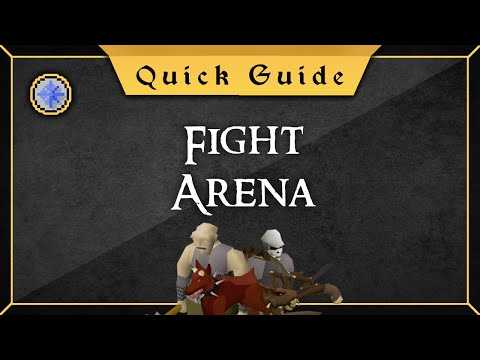 [Quick Guide] Fight Arena