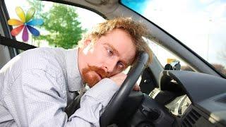 видео Укачивание в транспорте: причины и полезные советы