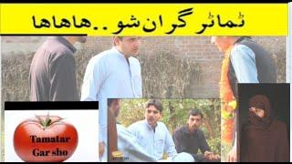 Wada PA Tamatar Sho - Pashto funny video - - Tamatar Gran De