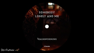 2raumwohnung - Somebody Lonely And Me (Ricardo Villalobos Remix)