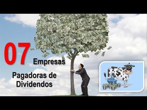 07 AÇÕES PAGADORAS DE DIVIDENDOS PARA 2020