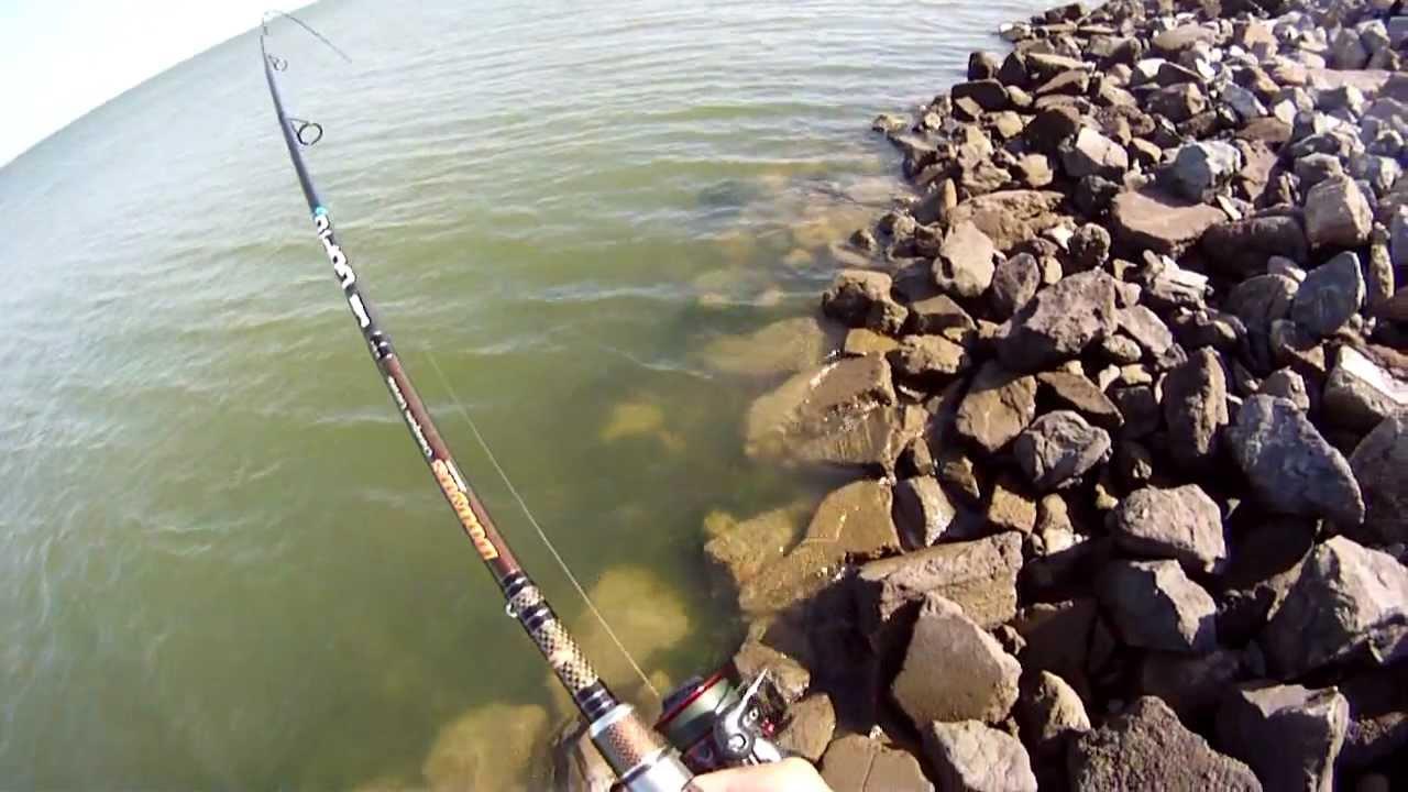 Striped Bass Fishing California Using My Dobyns Dx 783