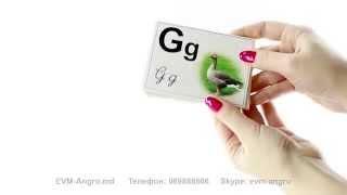 069888666.md Алфавит «Буквы румынские» карточки с картинками