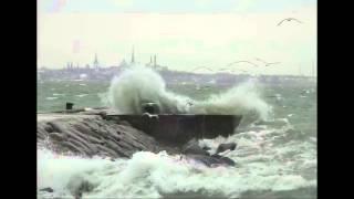 шторм Таллин Вивальди