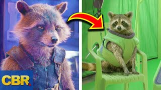 10 Little Known Facts About Rocket Raccoon From Marvel's Avengers