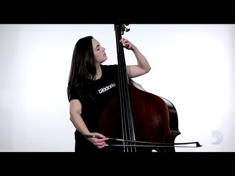 D'Addario: Kaplan Solo Double Bass Strings