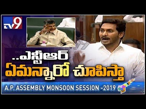 మీ తండ్రి వైస్సార్ కూడా అప్పట్లో పార్టీ మారాడు గుర్తుపెట్టుకో : Chandrababu - TV9