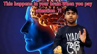 You Must Know What Happens In Your Brain When You Pay Attention ?!!
