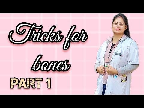 Bones / axial skeleton tricks / facial bone / cranial bone for neet aspirants/ neet 2018